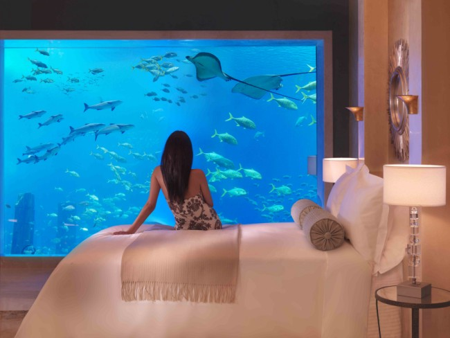 Hidden Aquatic Features At Dubai S Atlantis Palm Hotel Travel News